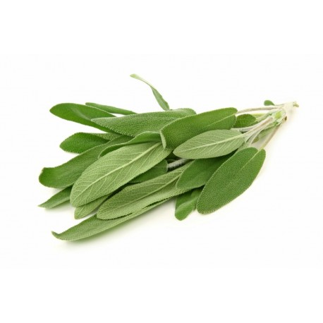 Salvia - 30gr