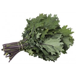 Kale ruso ORGANICO -  200 gr
