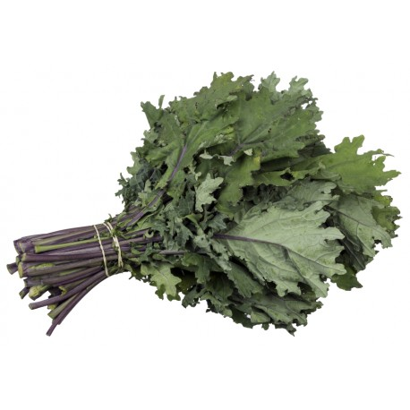 Kale ruso -  200 gr