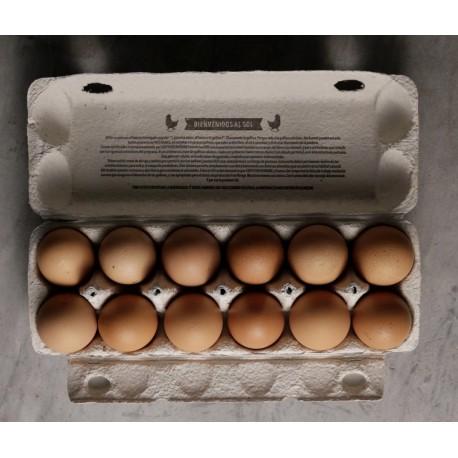 6 Huevos ORGANICOS FREE RANGE