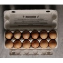 12 Huevos ORGANICOS FREE RANGE