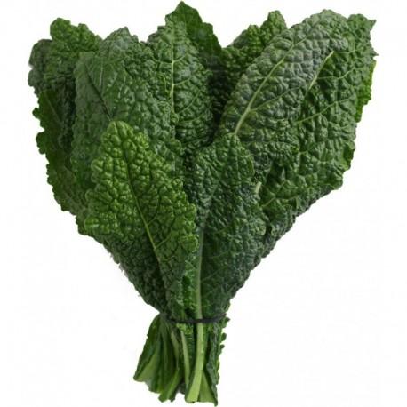 Mix Kale orgánico -  200 gr