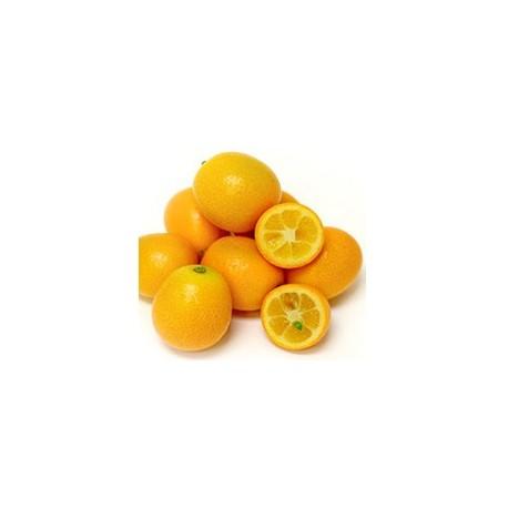 Quinoto orgánico - 1/2 kg