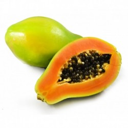 Papaya congelada 2 kg