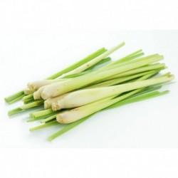 Lemongrass - 100gr