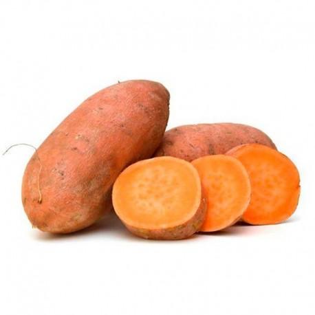 Boniato Zanahoria (kg)