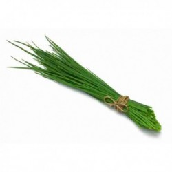 Ciboulette orgánico - 50gr