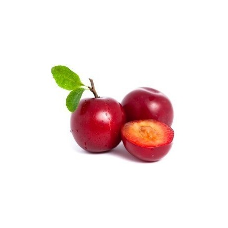 Ciruela Roja (1/2kg)