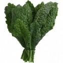 Kale toscano ORGANICO -  200 gr